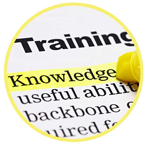 Training - developing the skills for success